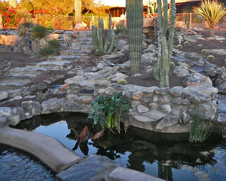 Tucson koi pond waterfall kmac landscaping construction for Koi pond waterfall
