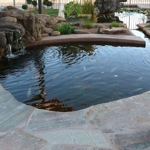Koi Pond, Waterfall and Flagstone Decking