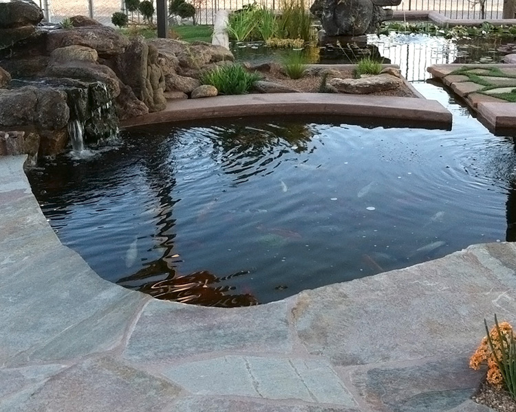 Tucson koi pond waterfall kmac landscaping construction for Koi pond deck