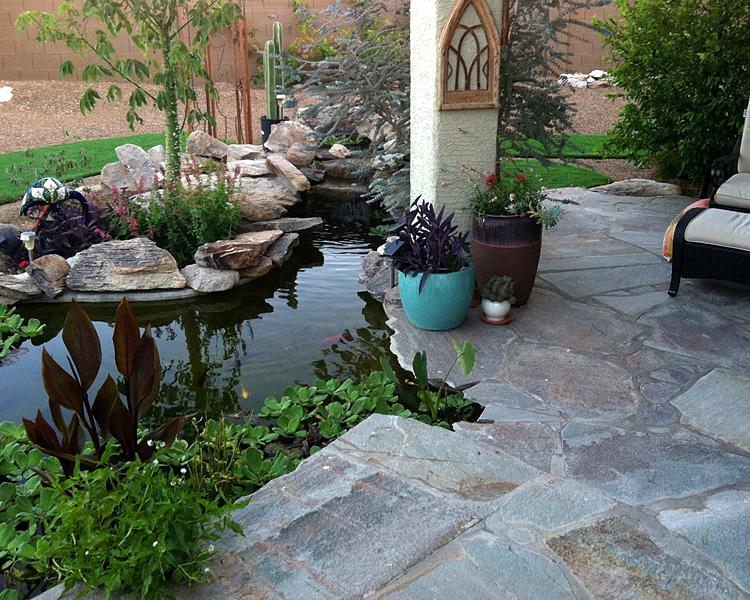 Tucson koi pond waterfall kmac landscaping construction for Az pond and pool