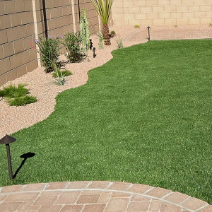 Paver and Turf Backyard