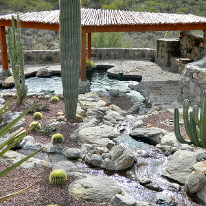 Waterfall/Stream with Rustic Pergola
